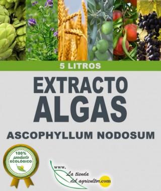 EXTRACTO ALGAS Ascophyllum nodosum (5 Litros)
