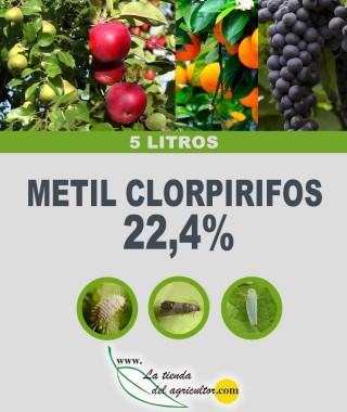 Metil Clorpirifos 22,4% (5 Litros)