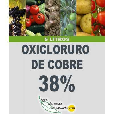 OXICLORURO DE COBRE 38% (5...