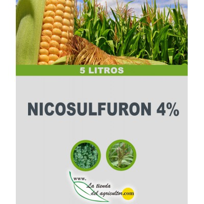 NICOSULFURON 4% (5 Litros)
