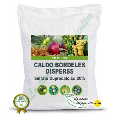 CALDO BORDELES...