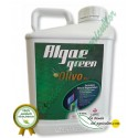 Algaegreen Olivo Plus ( 5 Litros)