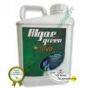 Algaegreen Olivo Plus ( 20 Litros)