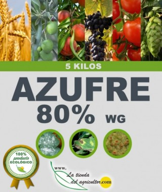 AZUFRE 80% WG (5KG)