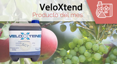 Producto del mes: VeloXtend