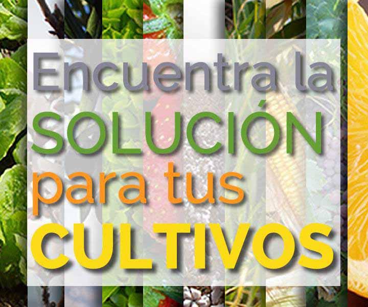 Mas seguridad - La Tienda del Agricultor & Confianza Online