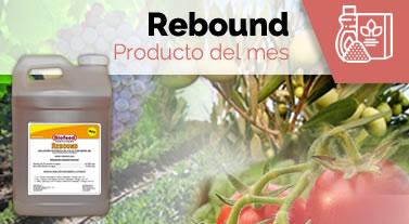 Producto del mes: Rebound Biofeed